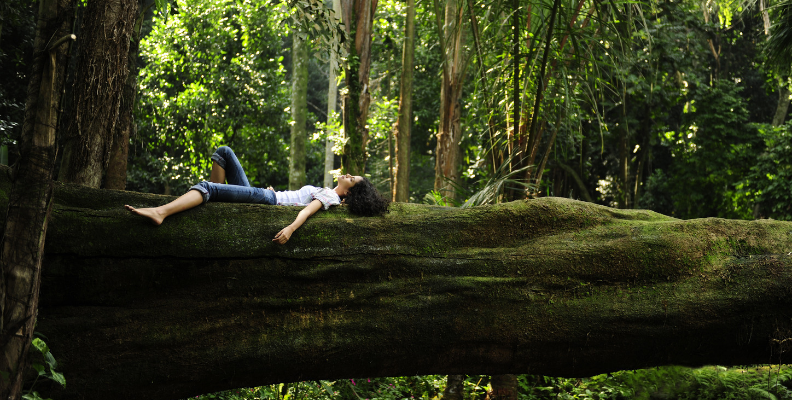 woman laying on a large tree downed trunk in the forest